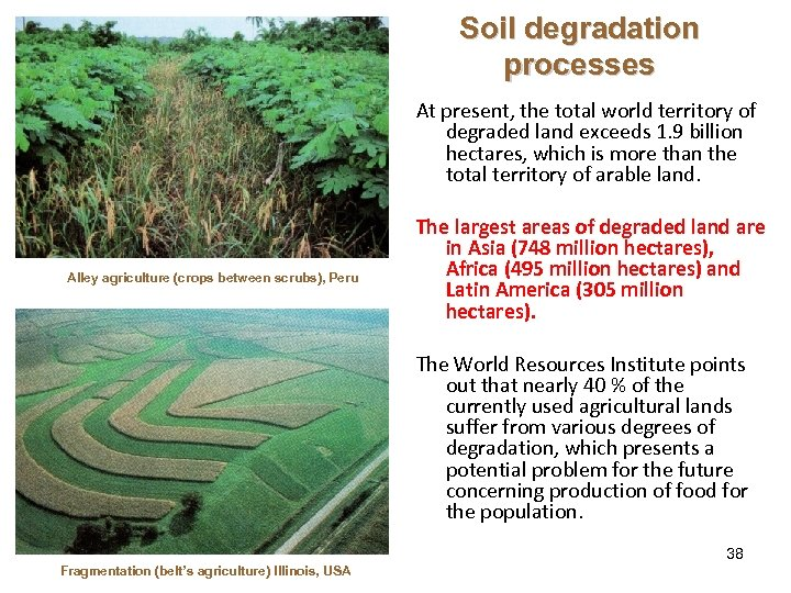 Soil degradation processes At present, the total world territory of degraded land exceeds 1.