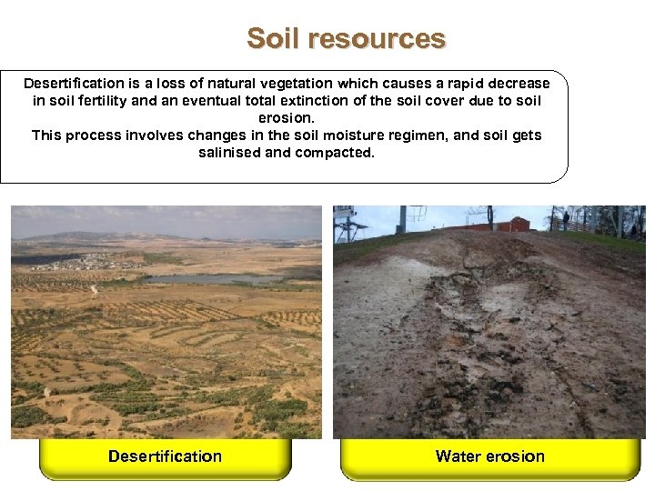 Soil resources Desertification is a loss of natural vegetation which causes a rapid decrease