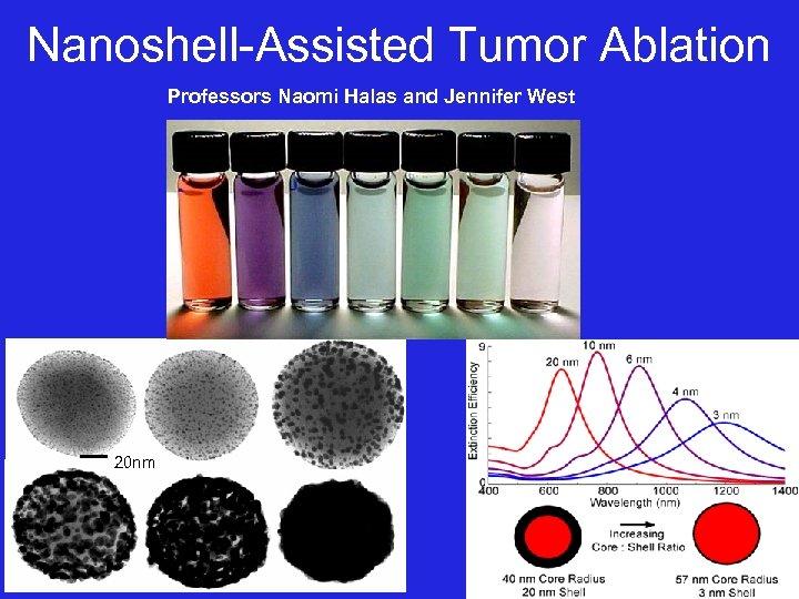 Nanoshell-Assisted Tumor Ablation Professors Naomi Halas and Jennifer West 20 nm
