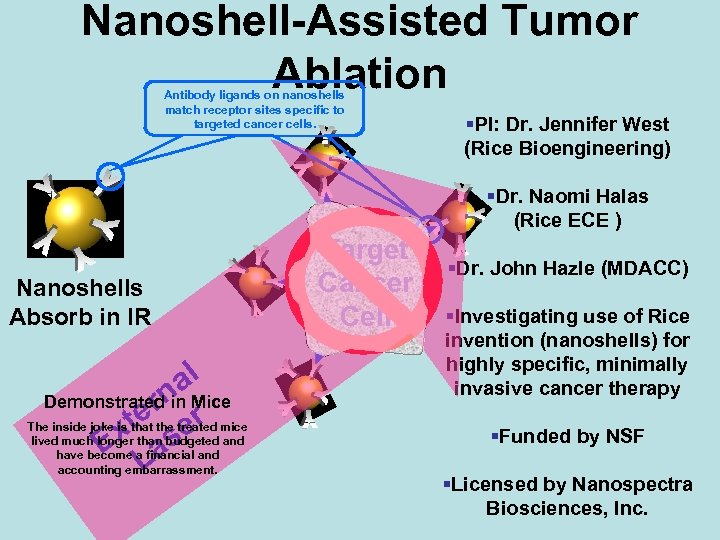 Nanoshell-Assisted Tumor Ablation Antibody ligands on nanoshells match receptor sites specific to targeted cancer