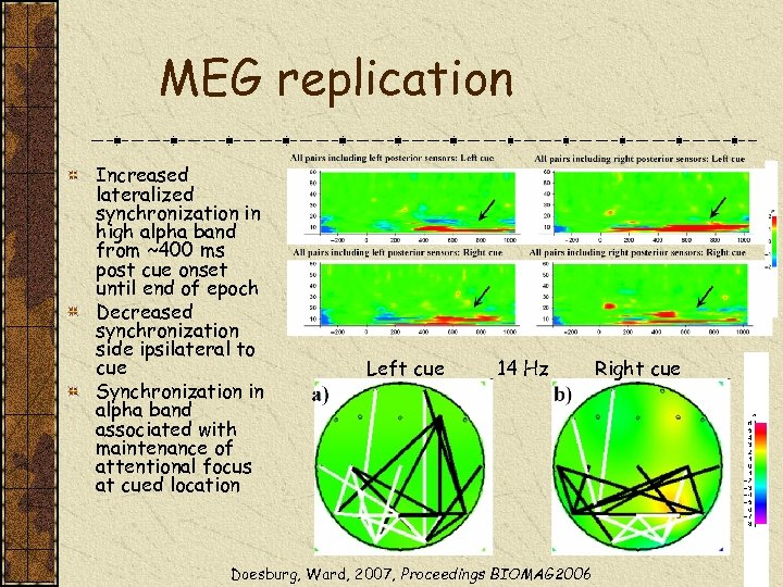MEG replication Increased lateralized synchronization in high alpha band from ~400 ms post cue
