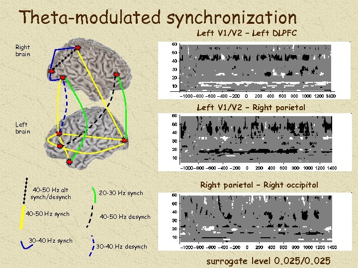 Theta-modulated synchronization Left V 1/V 2 – Left DLPFC Right brain Left V 1/V