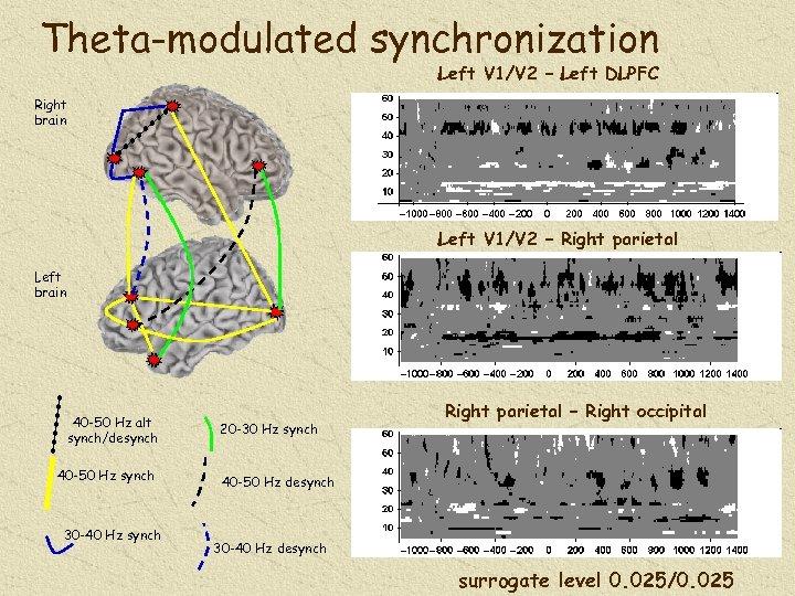 Theta-modulated synchronization Left V 1/V 2 – Left DLPFC Right brain Left V 1/V