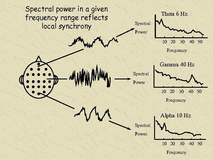 Spectral power in a given frequency range reflects local synchrony Theta 6 Hz Spectral