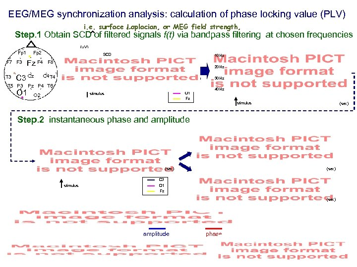 EEG/MEG synchronization analysis: calculation of phase locking value (PLV) i. e. surface Laplacian, or