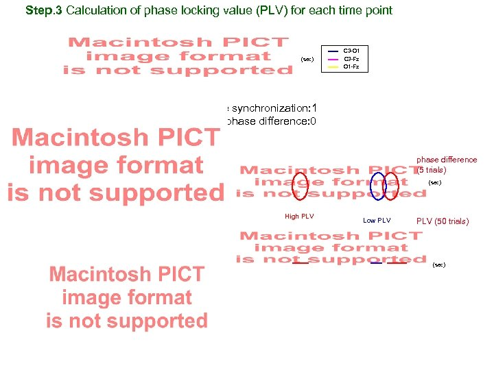 Step. 3 Calculation of phase locking value (PLV) for each time point (sec) ⇒
