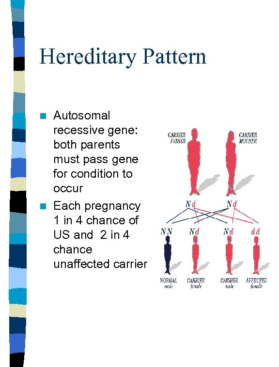 Hereditary Pattern Autosomal recessive gene: both parents must pass gene for condition to occur
