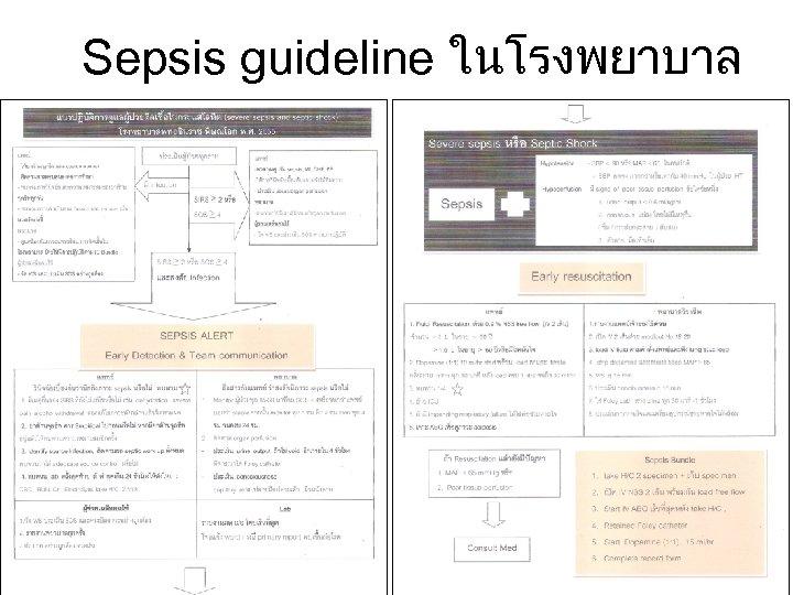 Sepsis guideline ในโรงพยาบาล