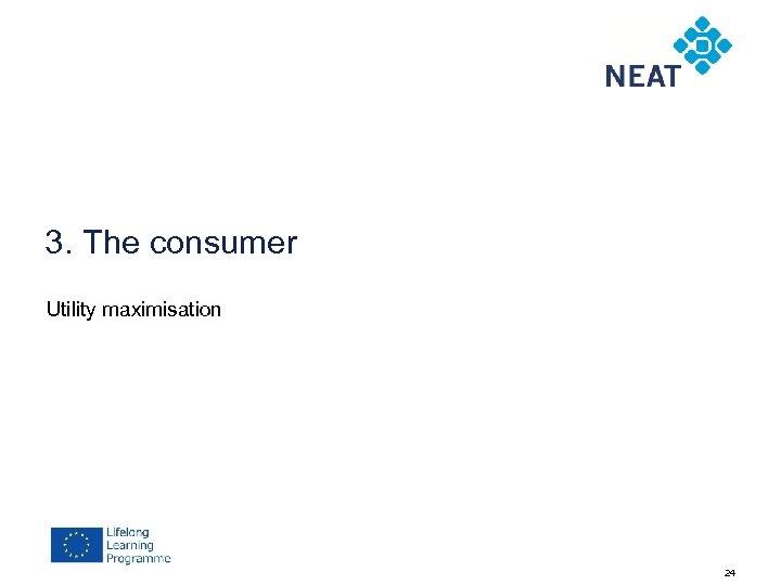 3. The consumer Utility maximisation 24