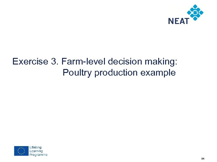 Exercise 3. Farm-level decision making: Poultry production example 54