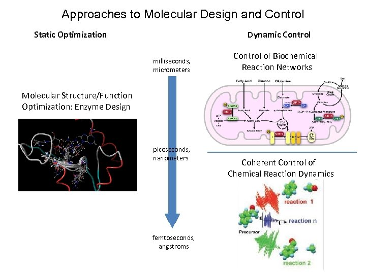 Approaches to Molecular Design and Control Static Optimization Dynamic Control milliseconds, micrometers Control of