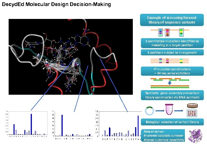 Decyd. Ed Molecular Design Decision-Making Example of screening focused library of sequence variants 3