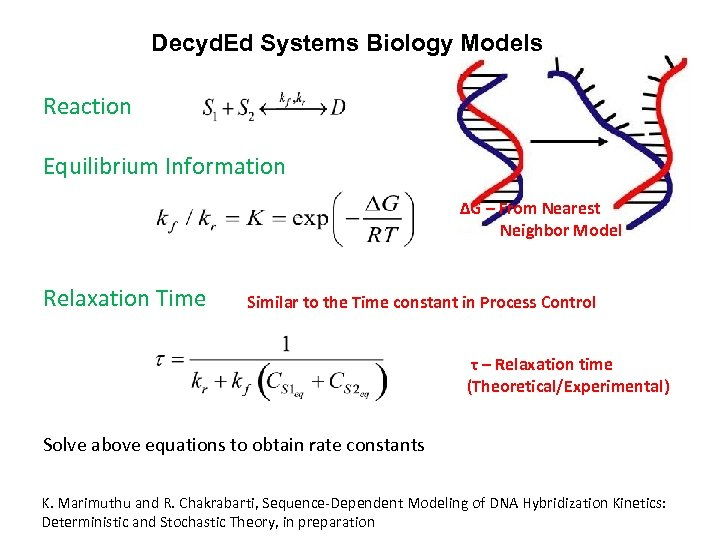 Decyd. Ed Systems Biology Models Reaction Equilibrium Information ΔG – From Nearest Neighbor Model