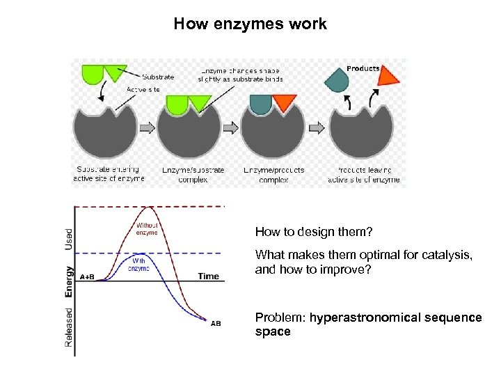 How enzymes work How to design them? What makes them optimal for catalysis, and