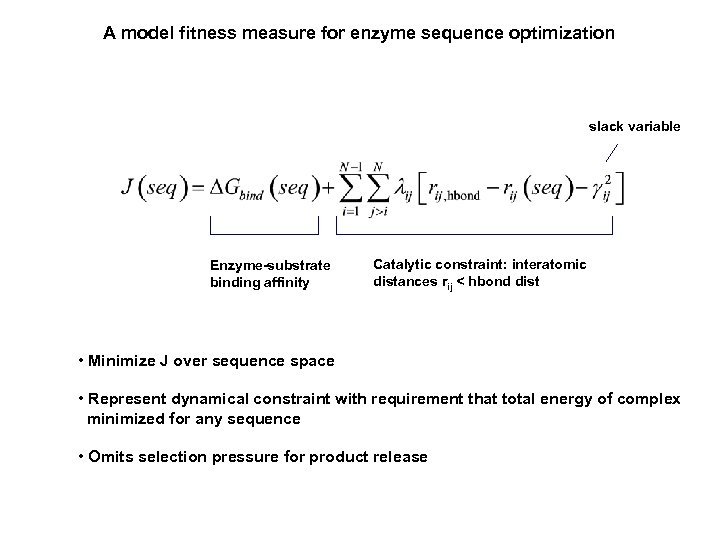A model fitness measure for enzyme sequence optimization slack variable Enzyme-substrate binding affinity Catalytic