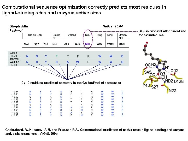 Computational sequence optimization correctly predicts most residues in ligand-binding sites and enzyme active sites