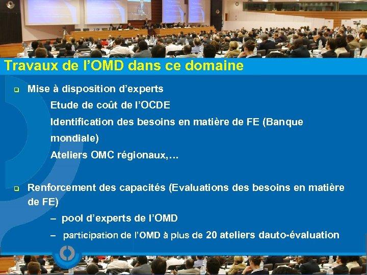 Travaux de l'OMD dans ce domaine q Mise à disposition d'experts Etude de coût