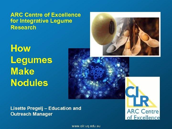 ARC Centre of Excellence for Integrative Legume Research How Legumes Make Nodules Lisette Pregelj