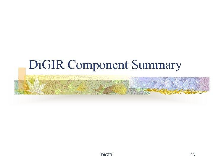 Di. GIR Component Summary Di. GIR 13
