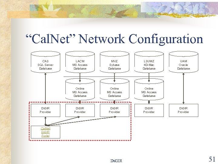 """Cal. Net"" Network Configuration CAS SQL Server Database MVZ Sybase Database LSUMZ 4 D-Mac"