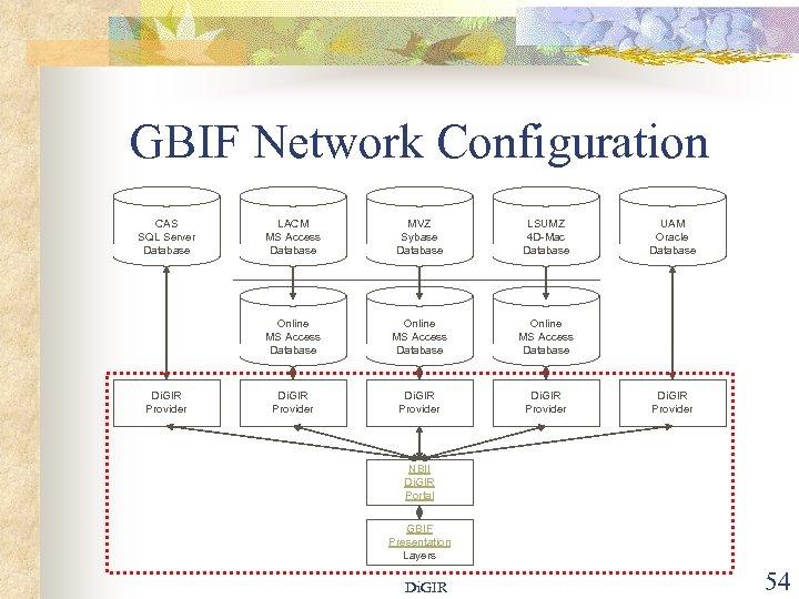 GBIF Network Configuration CAS SQL Server Database MVZ Sybase Database LSUMZ 4 D-Mac Database