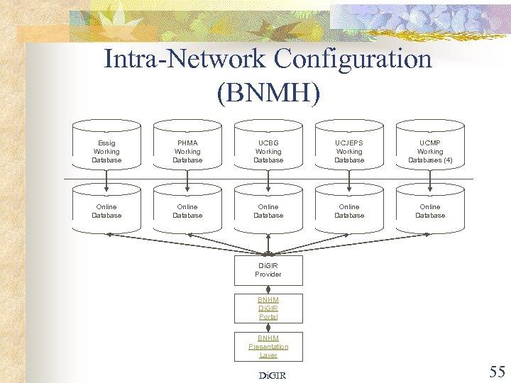 Intra-Network Configuration (BNMH) Essig Working Database PHMA Working Database UCBG Working Database UCJEPS Working