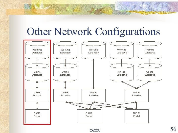 Other Network Configurations Working Database Online Database Di. GIR Provider Di. GIR Portal Working