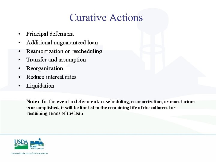 Curative Actions • • Principal deferment Additional unguaranteed loan Reamortization or rescheduling Transfer and