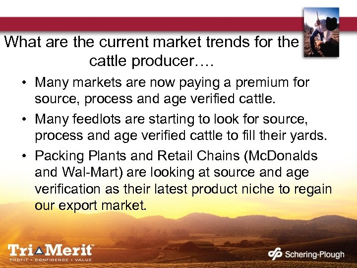 What are the current market trends for the cattle producer…. • Many markets are