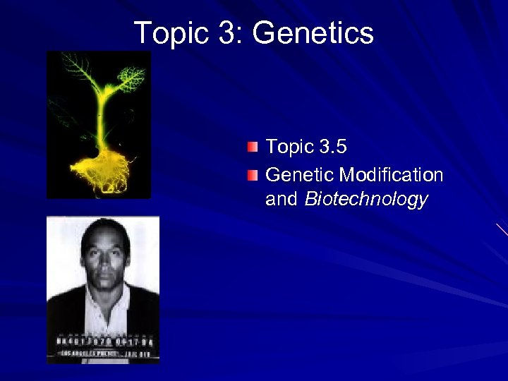 Topic 3: Genetics Topic 3. 5 Genetic Modification and Biotechnology