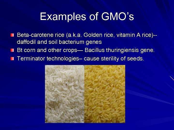 Examples of GMO's Beta-carotene rice (a. k. a. Golden rice, vitamin A rice)-daffodil and