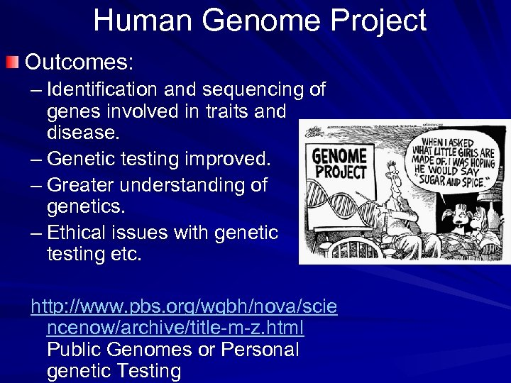 Human Genome Project Outcomes: – Identification and sequencing of genes involved in traits and