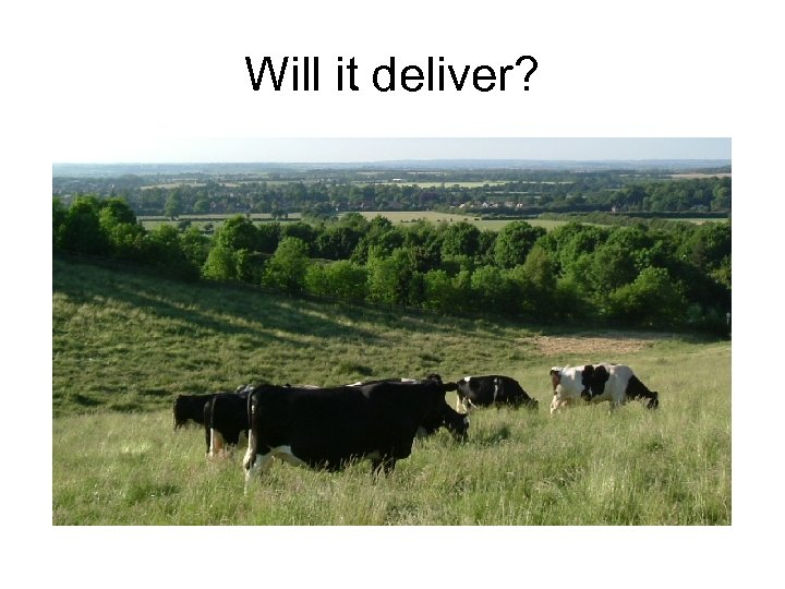 Will it deliver?