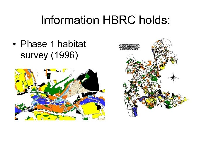 Information HBRC holds: • Phase 1 habitat survey (1996)