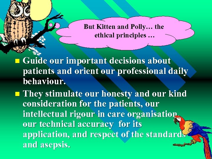 But Kitten and Polly… the ethical principles … Guide our important decisions about patients