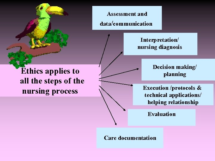 Assessment and data/communication Interpretation/ nursing diagnosis Ethics applies to all the steps of
