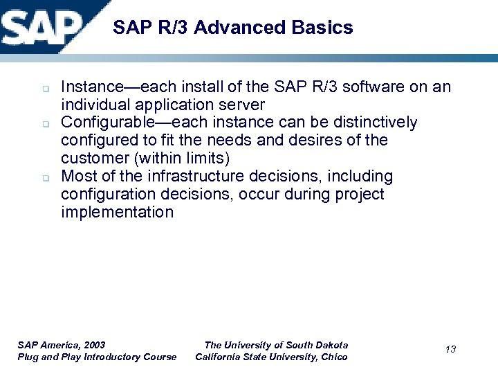 SAP R/3 Advanced Basics q q q Instance—each install of the SAP R/3 software