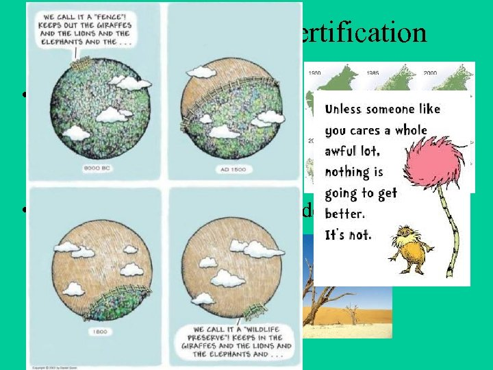 Deforestation/ Desertification • The destruction of the forest (Amazon) • The changing of farm