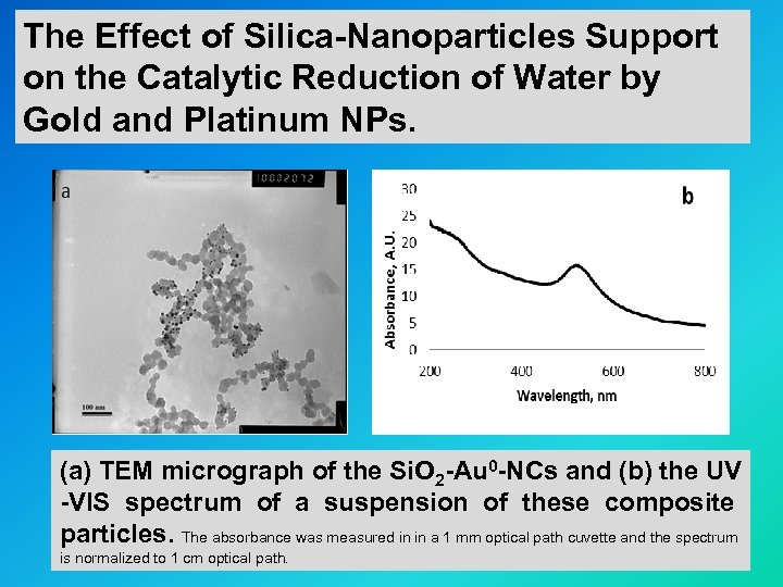 The Effect of Silica-Nanoparticles Support on the Catalytic Reduction of Water by Gold and