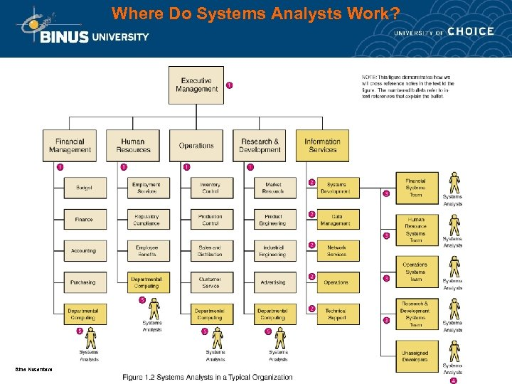 Where Do Systems Analysts Work? Bina Nusantara