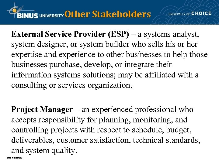 Other Stakeholders External Service Provider (ESP) – a systems analyst, system designer, or system