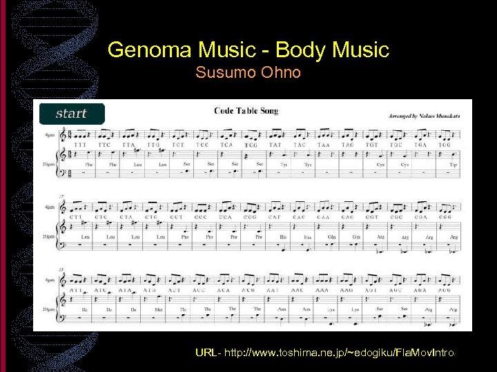 Genoma Music - Body Music Susumo Ohno URL- http: //www. toshima. ne. jp/~edogiku/Fla. Mov.