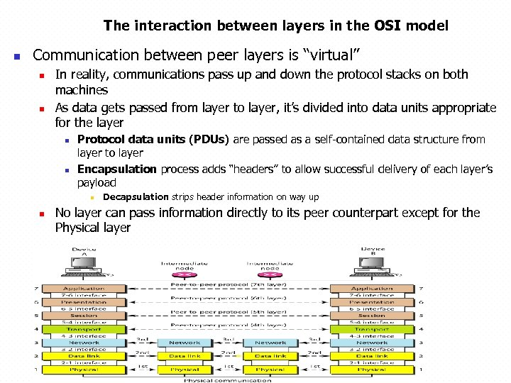 The interaction between layers in the OSI model n Communication between peer layers is