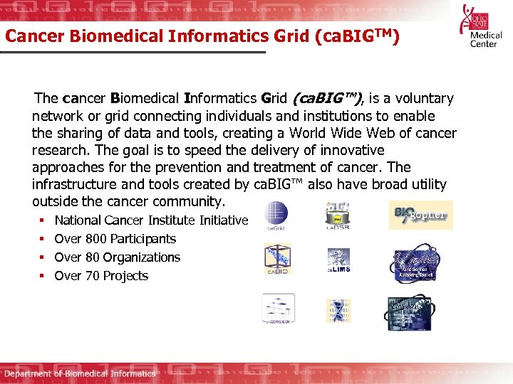 Cancer Biomedical Informatics Grid (ca. BIGTM) The cancer Biomedical Informatics Grid (ca. BIG™), is