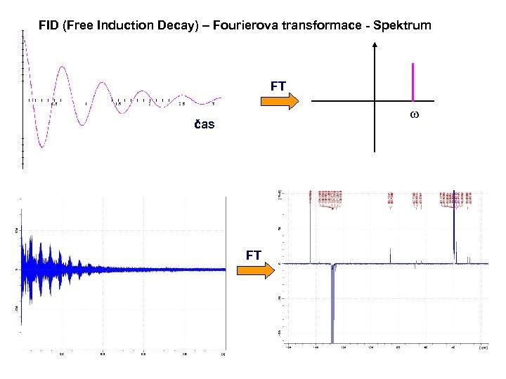 FID (Free Induction Decay) – Fourierova transformace - Spektrum FT w čas FT