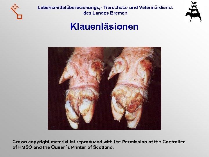 Lebensmittelüberwachungs, - Tierschutz- und Veterinärdienst des Landes Bremen Klauenläsionen Crown copyright material ist reproduced