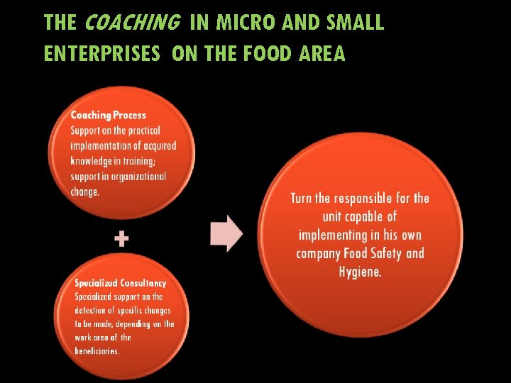 THE COACHING IN MICRO AND SMALL ENTERPRISES ON THE FOOD AREA