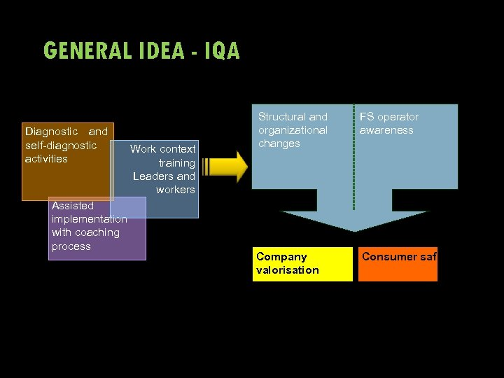 GENERAL IDEA - IQA Diagnostic and self-diagnostic activities Assisted implementation with coaching process Work