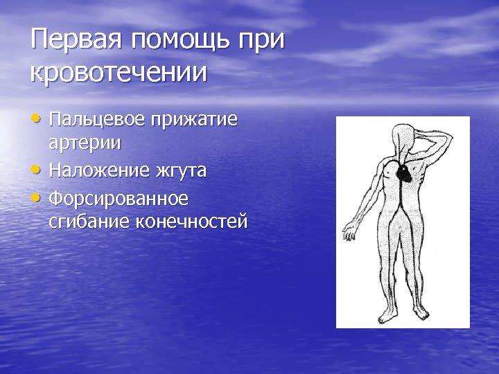 Первая помощь при кровотечении • Пальцевое прижатие • • артерии Наложение жгута Форсированное сгибание