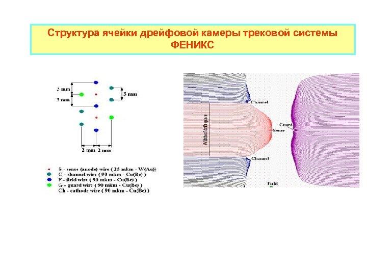 Структура ячейки дрейфовой камеры трековой системы ФЕНИКС